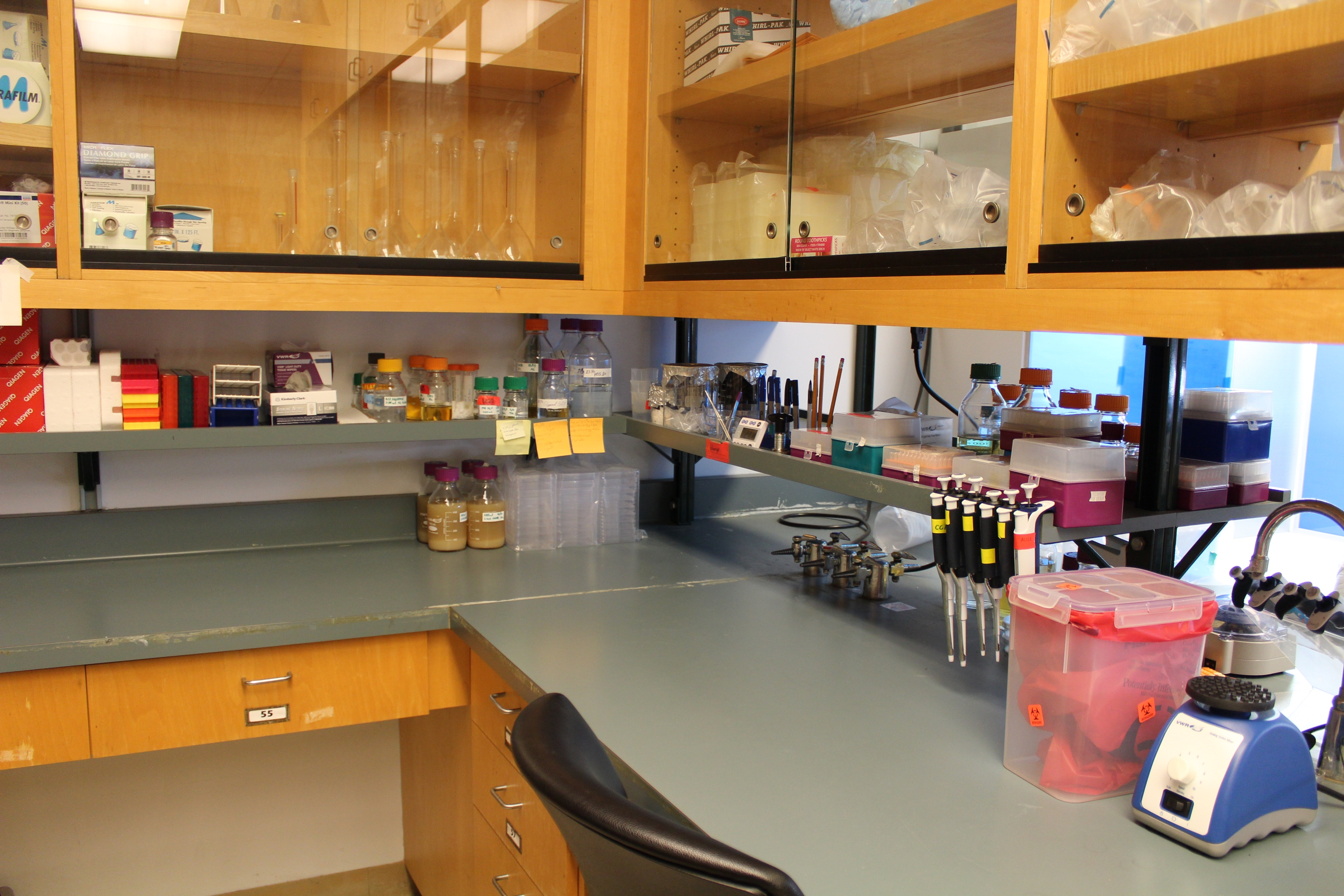 Photo of Melotto Lab